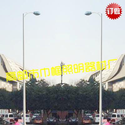 道路照明灯 9米单双臂路灯 高压钠灯150 250 400W 工厂 道路灯