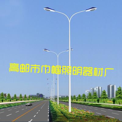 工厂直批 双臂照明灯杆 11.5米挑臂中杆广场高杆路灯杆 质优价廉