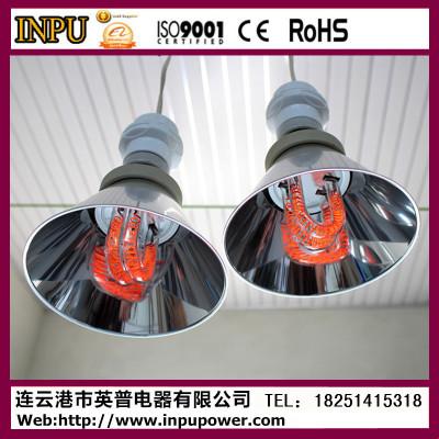 浴霸灯泡 红外辐射灯泡 碳纤维浴霸灯泡 可加工定制