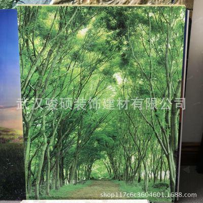 竹木纤维3D打印背景墙装饰/壁画 图案尺寸可定制