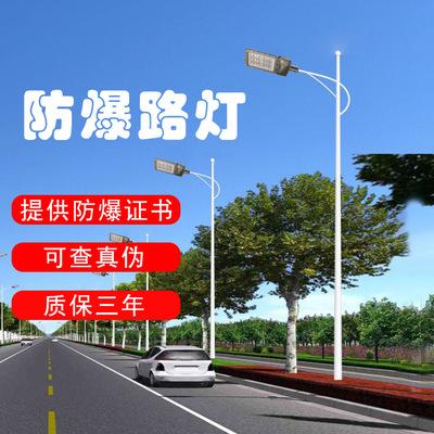 防爆路灯 6米7米8米市电路灯 加油站led路灯 热镀锌路灯杆