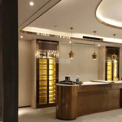 欧式酒柜 家装现代简式酒柜 餐边两门柜 可定制不锈钢恒温酒柜