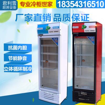 厂家直销单门啤酒柜 啤酒饮品保鲜柜 立式展示柜冷藏柜冷藏柜