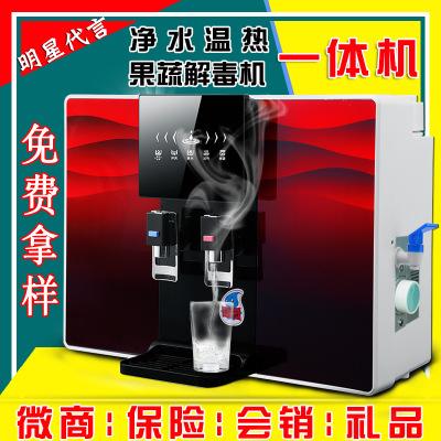 新款净水器家用纯水机 反渗透加热RO一体多功能温热净水机