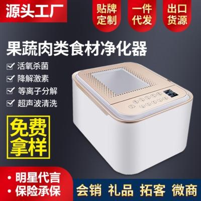 果蔬消毒机全自动家用解毒洗菜机 超声波食材净化机礼品清洗器