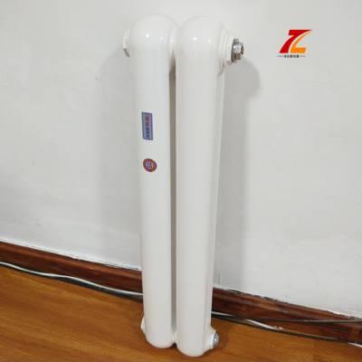 钢二柱暖气片 钢制柱型暖气片 暖气片图片 暖气片价格 暖气片生产厂家