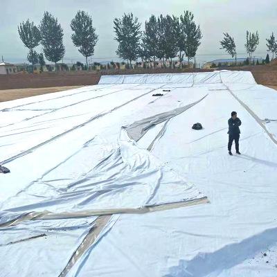 厂家定制黑色复合土工膜一布一膜批发hdpe长丝复合土工膜500g