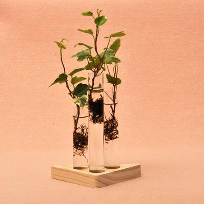 创意试管花瓶容器办公室绿色饰品 简约木座水培玻璃花瓶 时尚摆件