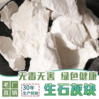 广东厂家直供工业级土壤回填氧化钙含量80生石灰块状 现货
